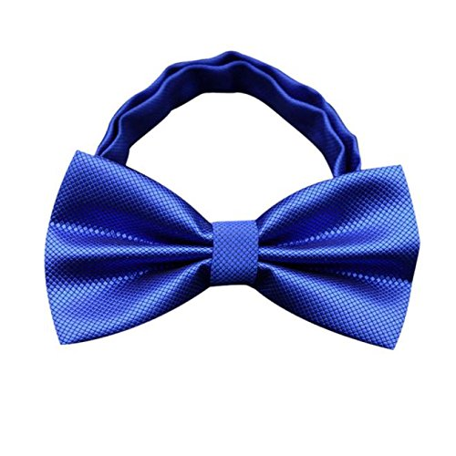 Clog Bow (Gifts For Men ! Charberry Mens Bow Tie Butterfly Cravat bowtie Wedding commercial bow ties Cravats Accessories (Blue))