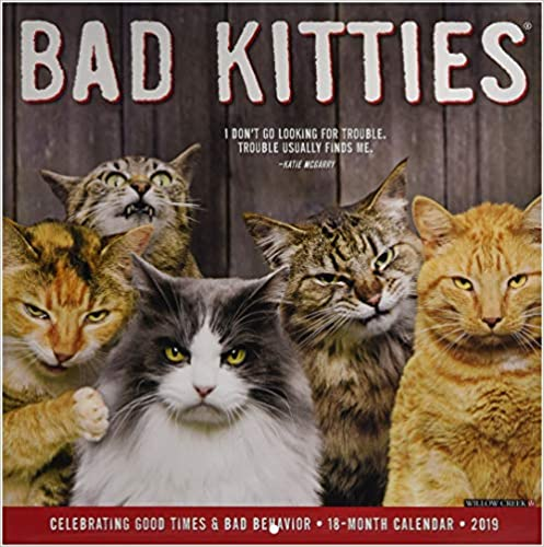 Bad Kitties 2019 Calendar