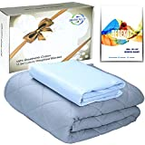 BEDEXUT Cooling Weighted Blanket 15 lbs Premium - Queen/Full Size 60x80 - Soft Organic Cotton Removable Cover - Best Adult Heavy Calm Blanket with Small Pocket for Women and Men (Sky Blue)