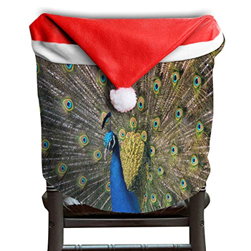(OuLian Christmas Hat Chair Covers Peacock Feathers Chairs Back Cover Slipcovers Kitchen Sets for Holiday Decorations)