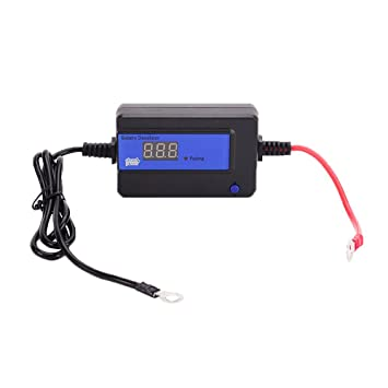 cleanpower 200AH Auto Pulse Battery Desulfator for 12/24/36