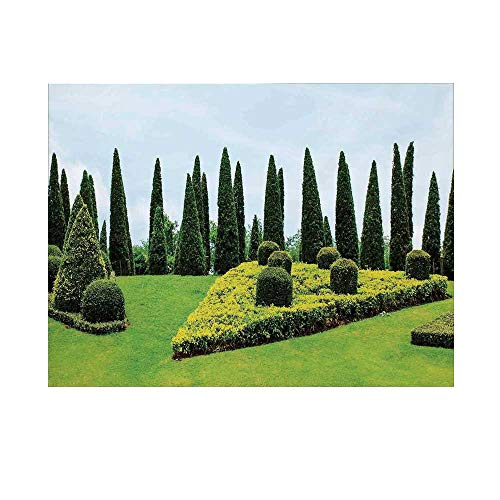 (Country Home Decor Photography Background,Classic Formal Designed Garden with Evergreen Shrubs Boxwood Topiaries Backdrop for Studio,8x7ft)