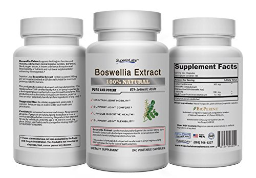 Boswellia Extract by Superior Labs - Non Synthetic, 500mg, 240 Vegetable Caps 633131922813