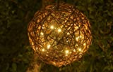 """Willowbrite WB12GLOBE 12"""" Natural Willow Branch Globe Filled with LEDs, Warm White"""