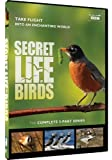 Secret Life of Birds - 5 Part Series