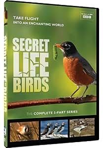 Secret Life of Birds - 5 Part Series