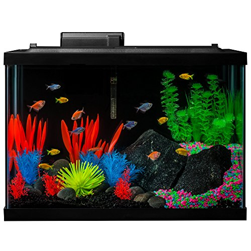 (GloFish 20 Gallon Aquarium Kit with LED Lights, Decor Heater and Filter)