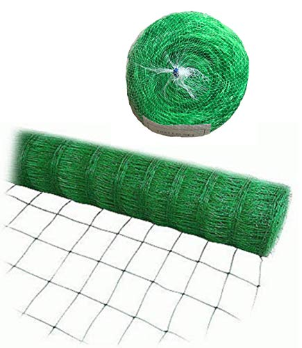 (Bluefire Direct Green Trellis Netting for Climbing Plants Commercial Grade Plastic Garden Trellis Net (6.5 ft x 328 ft))