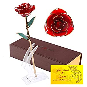 DuraRose Authentic Rose with Stand and Love Card, Stem Dipped in 24k Gold - Best Gift for Loves Ones. Ideal for Valentine's Day, Mother's Day, Anniversary, Birthday, (Adorable Red) 1
