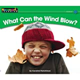What Can the Wind Blow?, Caroline Hutchinson, 1607190311
