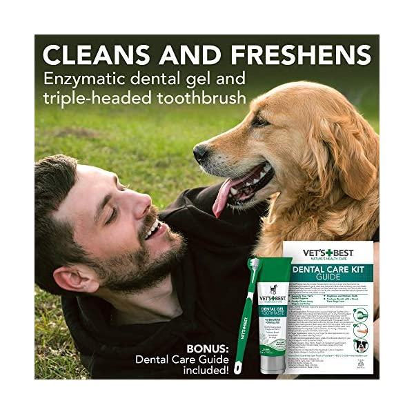 Vet's Best Enzymatic Dog Toothpaste | Teeth Cleaning and Fresh Breath Dental Care Gel | Vet Formulated 2