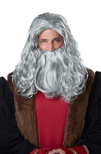 [California Costumes Men's Renaissance Man Wig and Beard, Gray, One Size] (Men Renaissance Costumes)