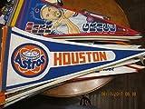 Houston Astros astrodome stadium pennant blue white