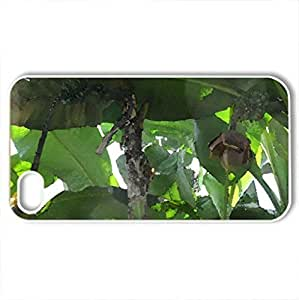 Africa Banana giant flowers - Case Cover for iPhone 4 and 4s (Flowers Series, Watercolor style, White)