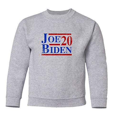 Joe Presidential Campaign Biden President 2020 Disstressed Unisex Youth Sweatshirt Crewneck Sweater (Ash, Youth Large)