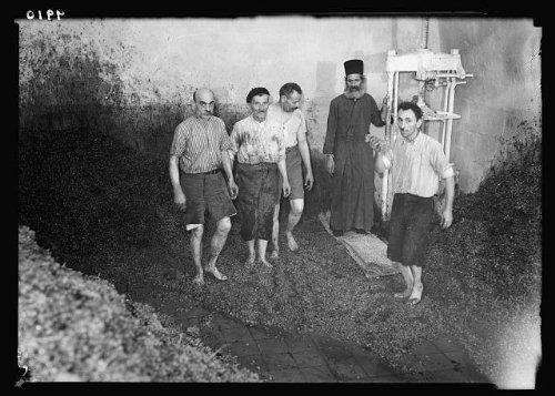 Photo: 'Treading the wine press' in Greek convent cellars,Jerusalem (Greek Wine Cellars)