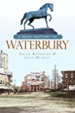 A Brief History of Waterbury