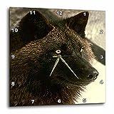 Wild animals – Tundra Wolf – 13×13 Wall Clock (dpp_723_2) Review