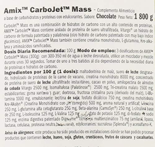 Amix Carbojet Mass Professional Carbohidratos - 1800 ...