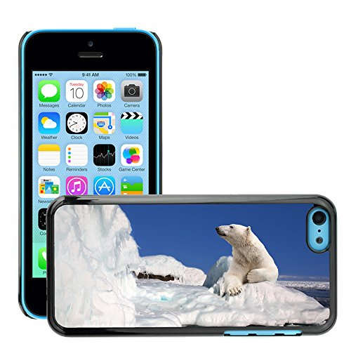 Premio Sottile Slim Cassa Custodia Case Cover Shell // V00002189 Ours polaire // Apple iPhone 5C