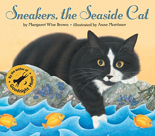 Sneakers, the Seaside Cat - Seaside Stores Outlet