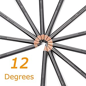 Professional Drawing Sketching Pencil Set – 12 Pieces Drawing Pencils 10B, 8B, 6B, 5B, 4B, 3B, 2B, B, HB, 2H, 4H, 6H Graphite Pencils for Beginners & Pro Artists