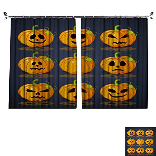 DESPKON Environmental Protection Material Polyester Poster,Banner and Background for Pumpkins for Halloween for Living Room Window,Sun Insulation. W120 x -