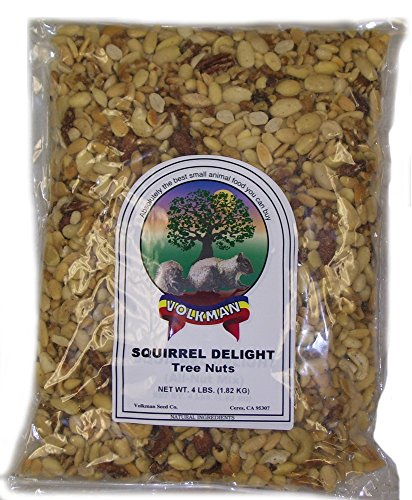 Nuts Squirrel (Small Animal Volkman Seed Squirrel Delight All Nut Mix Healthy Diet Food 4lbs)