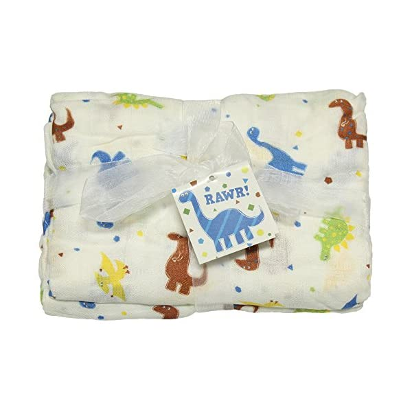Imagine Baby Products Bamboo Swaddling Blanket (Rawr)
