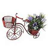 YK Decor 18.5x27.5x9.75 Tricycle Plant Stand Flower Pot Holder Terrace Nostalgic Bicycle Metal Planter Stand Indoor Outdoor Home Garden Yard Decor for Plant Lovers