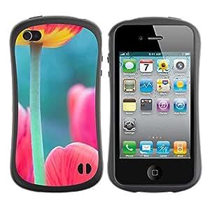 Suave TPU GEL Carcasa Funda Silicona Blando Estuche Caso de protección (para) Apple Iphone 4 / 4S / CECELL Phone case / / tulip poppy green pink spring nature /