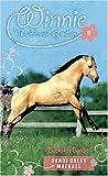 Buckskin Bandit (Winnie the Horse Gentler #8)