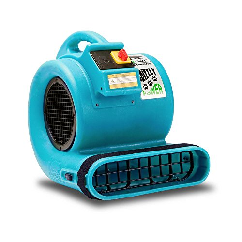 (B-Air Grizzly GP-1 1 HP Air Grizzly Mover Carpet Dryer Floor Fan for Water Damage Restoration and Pet Cage Dryer Turquoise)