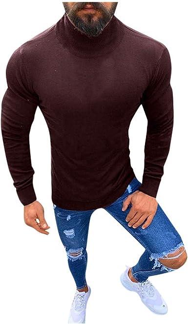 Twcx Men Knit Basic Winter Turtleneck Pullover Long Sleeve Slim Thermal Sweater