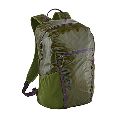 Patagonia Lightweight Black Hole Backpack 26L (Sprouted Green)
