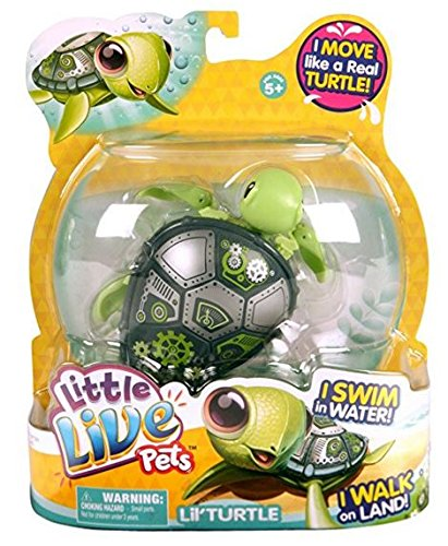 Buy Little Live Pets Turtle - Bolts Online at Low Prices in India ... 2a5cdb4cec