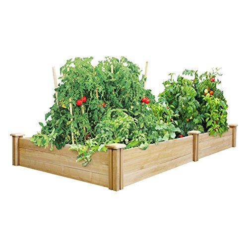 Greenes 4 Ft. X 8 Ft. X 10.5 In. Cedar Raised Garden - Bed Raised Garden Cedar