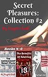 Secret Pleasures: Collection #2