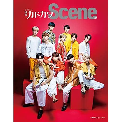 別冊カドカワ Scene 08 表紙画像