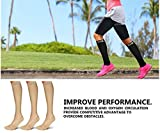 SB SOX 3-Pair Compression Socks (15-20mmHg) for Men & Women – Great Quality Comfortable Socks, Easy to Put On – Best Socks for Daily/Any Use, Running, Nurse, Travel
