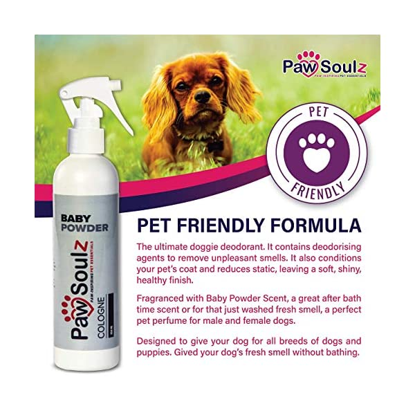 Paw Soulz Premium Dog Cologne Baby Powder - Long Lasting Dog Deodoriser Spray - Contains Aloe - Replenish Skin & Coat - Hypoallergenic - Natural Conditioner Perfume for Dogs & Puppies 3