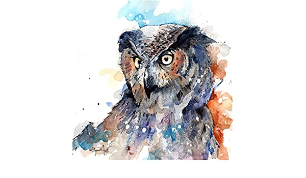 Horned Owl by Sean Parnell 24x24 Watercolor Painting Art Print Poster
