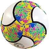 Sporting Goods : American Challenge Carnaval 18 Panel Soccer Ball