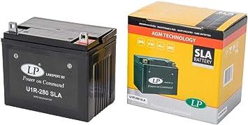 LANDPORT U1R-280 - Batería SLA para cortacésped, tractor cortacésped, cortacésped, cortacésped (12 V, 24 Ah): Amazon.es: Coche y moto