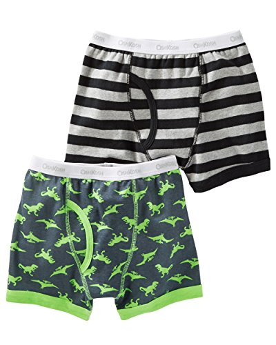 Boys 2 Pack Boxer Brief (Carter's Boy`s 2-Pack Boxer Briefs (4, Green Dinosaurs (32120213) / Black/Grey/Stripes))