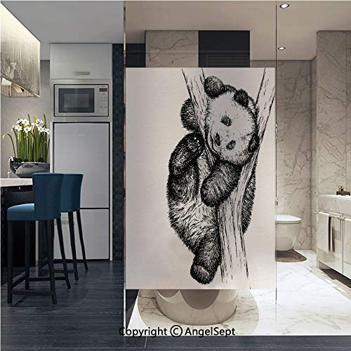 AngelSept Window Films Privacy Decorative Cute Little Panda Bear on Tree Branch Fury Tropical Jungle Zoo Sketchy Print Glass Film (22.8in. by 35.4in),Black White