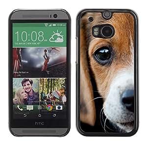TopCaseStore / la caja del caucho duro de la cubierta de protección de la piel - Beagle Eyes Sad Cute Puppy Pet - HTC One M8