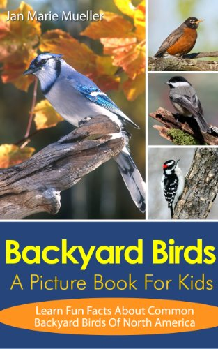 Backyard Birds Picture America Nature s ebook