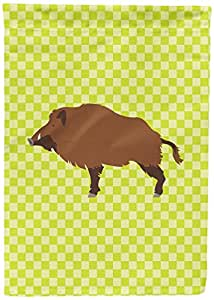 Caroline's Treasures BB7762CHF Wild Boar Pig Green Canvas House Flag, Multicolor