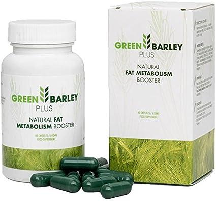 green barley plus producent